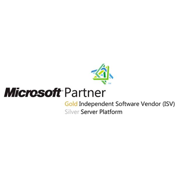 SB Italia Microsoft gold